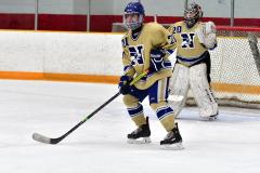 CIAC Ice Hockey; Newtown 2 vs. Daniel Hand 6 - Photo # 805