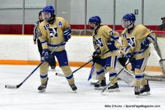 CIAC Ice Hockey; Newtown 2 vs. Daniel Hand 6 - Photo # 811