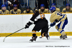 CIAC Ice Hockey; Newtown 2 vs. Daniel Hand 6 - Photo # 814