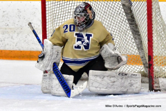 CIAC Ice Hockey; Newtown 2 vs. Daniel Hand 6 - Photo # 821