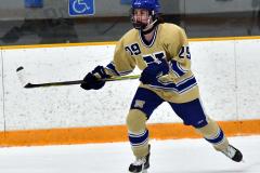 CIAC Ice Hockey; Newtown 2 vs. Daniel Hand 6 - Photo # 828
