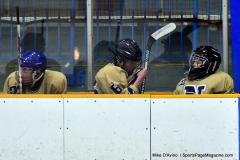 CIAC Ice Hockey; Newtown 2 vs. Daniel Hand 6 - Photo # 830