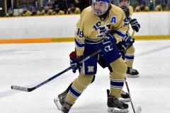 CIAC Ice Hockey; Newtown 2 vs. Daniel Hand 6 - Photo # 833