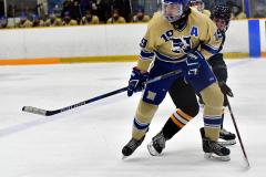 CIAC Ice Hockey; Newtown 2 vs. Daniel Hand 6 - Photo # 834