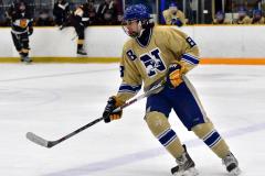 CIAC Ice Hockey; Newtown 2 vs. Daniel Hand 6 - Photo # 835