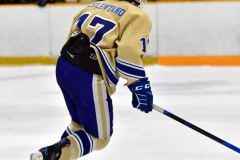 CIAC Ice Hockey; Newtown 2 vs. Daniel Hand 6 - Photo # 836