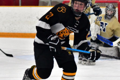 CIAC Ice Hockey; Newtown 2 vs. Daniel Hand 6 - Photo # 846
