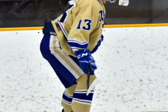 CIAC Ice Hockey; Newtown 2 vs. Daniel Hand 6 - Photo # 851