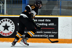 CIAC Ice Hockey; Newtown 2 vs. Daniel Hand 6 - Photo # 854