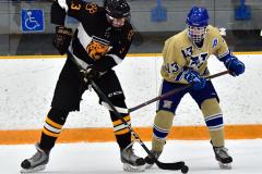 CIAC Ice Hockey; Newtown 2 vs. Daniel Hand 6 - Photo # 858