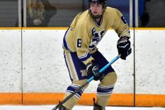 CIAC Ice Hockey; Newtown 2 vs. Daniel Hand 6 - Photo # 874