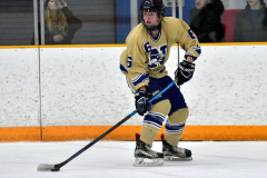 CIAC Ice Hockey; Newtown 2 vs. Daniel Hand 6 - Photo # 875