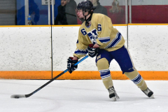 CIAC Ice Hockey; Newtown 2 vs. Daniel Hand 6 - Photo # 876