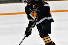 CIAC Ice Hockey; Newtown 2 vs. Daniel Hand 6 - Photo # 882