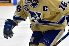 CIAC Ice Hockey; Newtown 2 vs. Daniel Hand 6 - Photo # 884