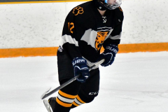 CIAC Ice Hockey; Newtown 2 vs. Daniel Hand 6 - Photo # 897