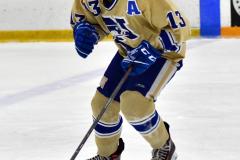CIAC Ice Hockey; Newtown 2 vs. Daniel Hand 6 - Photo # 900