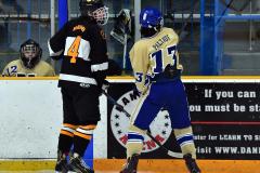 CIAC Ice Hockey; Newtown 2 vs. Daniel Hand 6 - Photo # 904