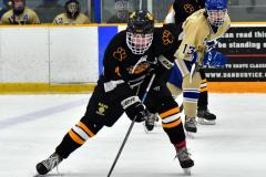 CIAC Ice Hockey; Newtown 2 vs. Daniel Hand 6 - Photo # 906