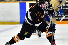 CIAC Ice Hockey; Newtown 2 vs. Daniel Hand 6 - Photo # 907