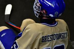 CIAC Ice Hockey; Newtown 2 vs. Daniel Hand 6 - Photo # 913