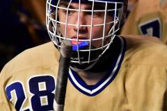 CIAC Ice Hockey; Newtown 2 vs. Daniel Hand 6 - Photo # 936