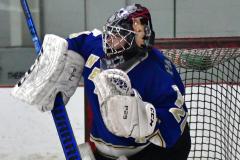 Gallery CIAC Ice Hockey; Northeastern 4 vs. Newtown 3 - Photo # 002