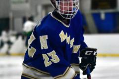 Gallery CIAC Ice Hockey; Northeastern 4 vs. Newtown 3 - Photo # 014
