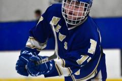 Gallery CIAC Ice Hockey; Northeastern 4 vs. Newtown 3 - Photo # 017