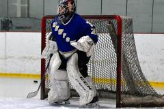 Gallery CIAC Ice Hockey; Northeastern 4 vs. Newtown 3 - Photo # 019