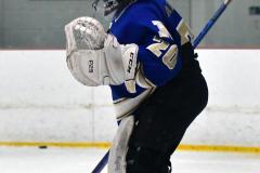 Gallery CIAC Ice Hockey; Northeastern 4 vs. Newtown 3 - Photo # 026