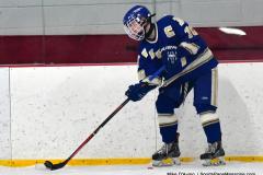 Gallery CIAC Ice Hockey; Northeastern 4 vs. Newtown 3 - Photo # 031