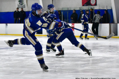 Gallery CIAC Ice Hockey; Northeastern 4 vs. Newtown 3 - Photo # 033