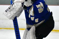 Gallery CIAC Ice Hockey; Northeastern 4 vs. Newtown 3 - Photo # 048