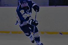 Gallery CIAC Ice Hockey; Northeastern 4 vs. Newtown 3 - Photo # 133