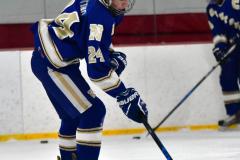 Gallery CIAC Ice Hockey; Northeastern 4 vs. Newtown 3 - Photo # 149