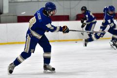 Gallery CIAC Ice Hockey; Northeastern 4 vs. Newtown 3 - Photo # 157