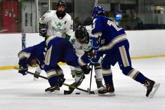 Gallery CIAC Ice Hockey; Northeastern 4 vs. Newtown 3 - Photo # 598