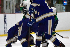Gallery CIAC Ice Hockey; Northeastern 4 vs. Newtown 3 - Photo # 599