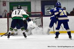 Gallery CIAC Ice Hockey; Northeastern 4 vs. Newtown 3 - Photo # 608