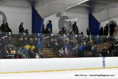 Gallery CIAC Ice Hockey; Northeastern 4 vs. Newtown 3 - Photo # 611