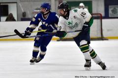Gallery CIAC Ice Hockey; Northeastern 4 vs. Newtown 3 - Photo # 618