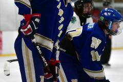 Gallery CIAC Ice Hockey; Northeastern 4 vs. Newtown 3 - Photo # 634
