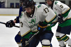 Gallery CIAC Ice Hockey; Northeastern 4 vs. Newtown 3 - Photo # 637