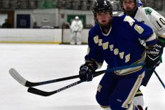 Gallery CIAC Ice Hockey; Northeastern 4 vs. Newtown 3 - Photo # 638