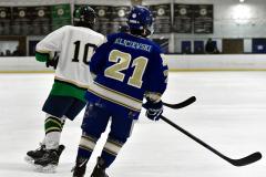 Gallery CIAC Ice Hockey; Northeastern 4 vs. Newtown 3 - Photo # 642