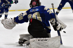 Gallery CIAC Ice Hockey; Northeastern 4 vs. Newtown 3 - Photo # 665