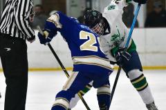 Gallery CIAC Ice Hockey; Northeastern 4 vs. Newtown 3 - Photo # 680