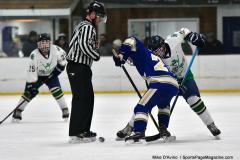Gallery CIAC Ice Hockey; Northeastern 4 vs. Newtown 3 - Photo # 681
