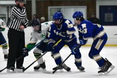 Gallery CIAC Ice Hockey; Northeastern 4 vs. Newtown 3 - Photo # 683